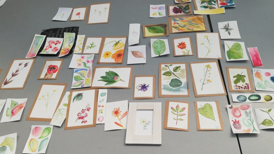 Workshop Botanisch Tekenen